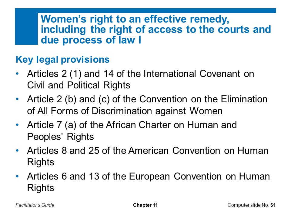 Women's right to an effective remedy, including the right of access to the courts and due process of law I