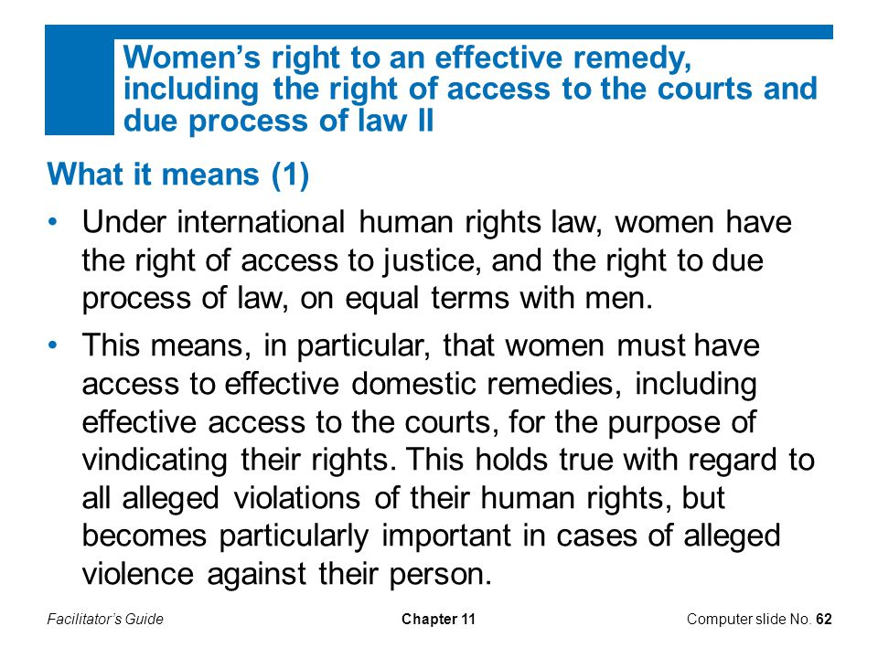 Women's right to an effective remedy, including the right of access to the courts and due process of law II