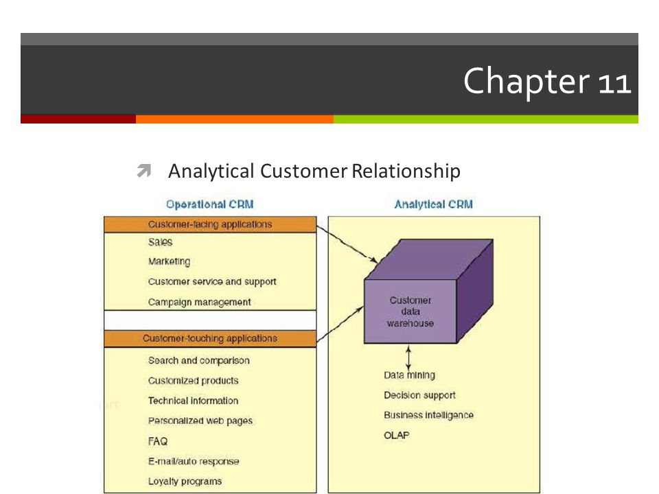 Chapter 11 Analytical Customer Relationship