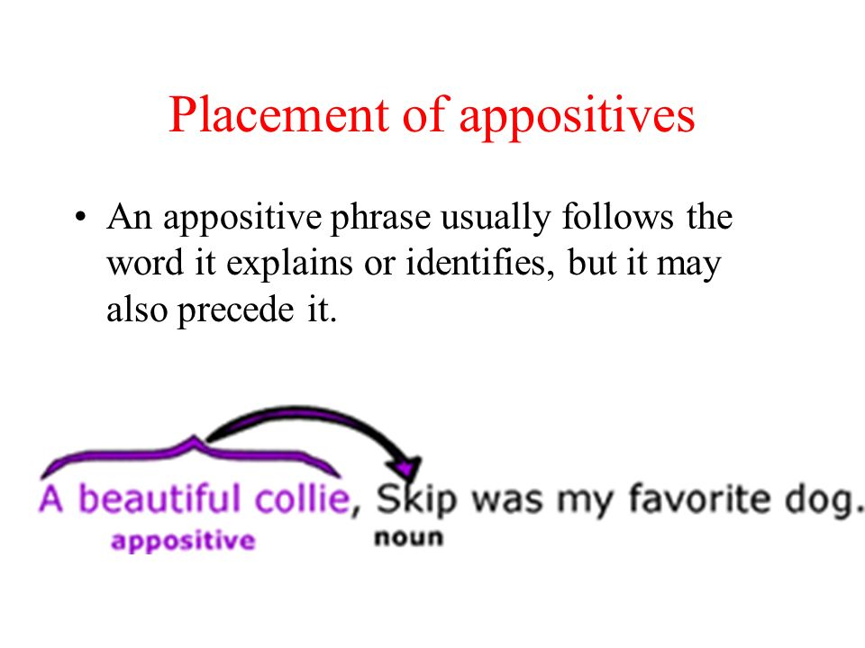 Placement of appositives