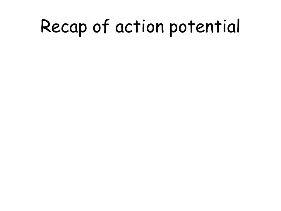 Recap of action potential
