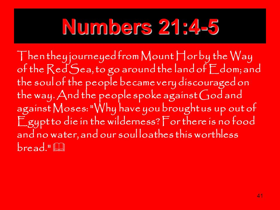 Numbers 21:4-5