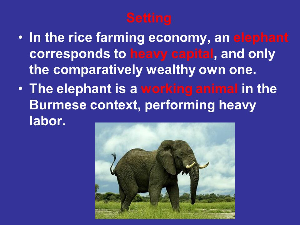 SettingIn the rice farming economy, an elephant corresponds to heavy capital, and only the comparatively wealthy own one.
