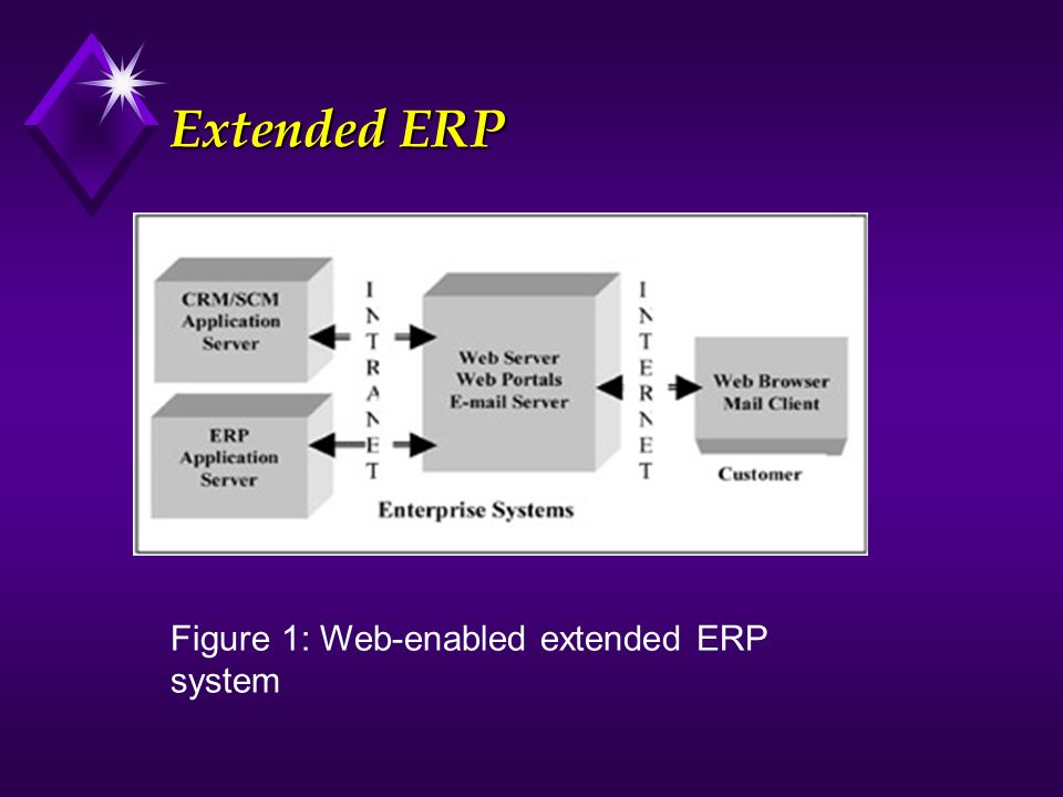 Extended ERP Figure 1: Web-enabled extended ERP system.
