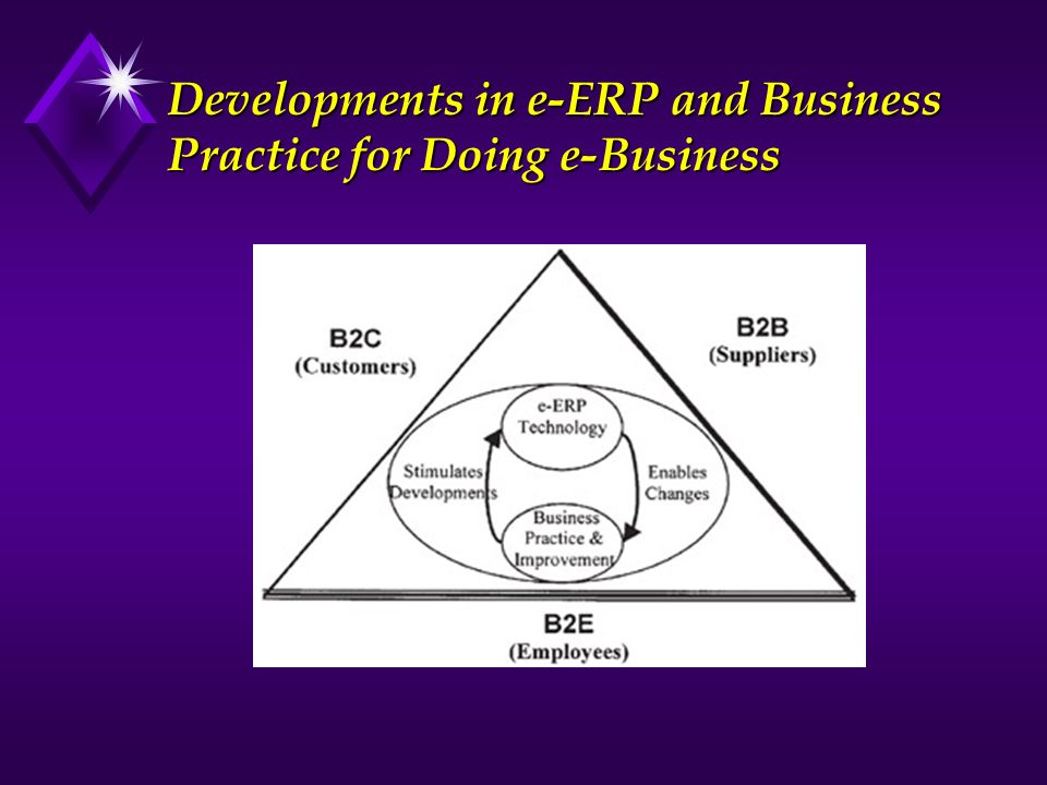 Developments in e-ERP and Business Practice for Doing e-Business