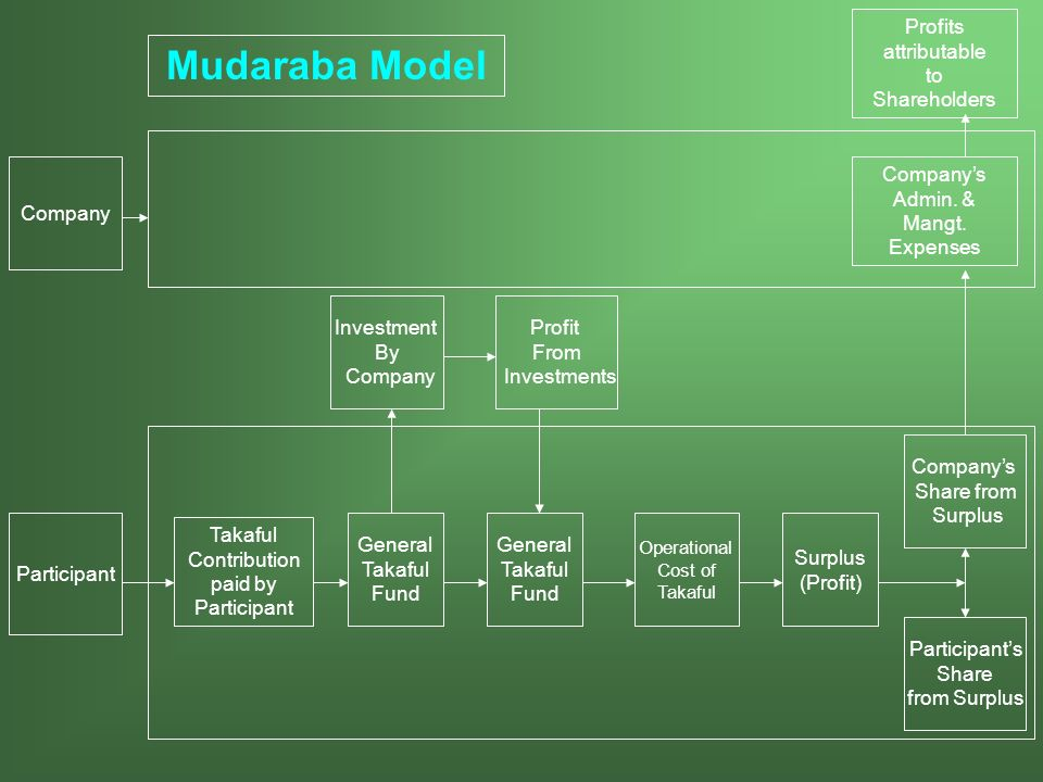 Mudaraba Model Profits attributable to Shareholders Company