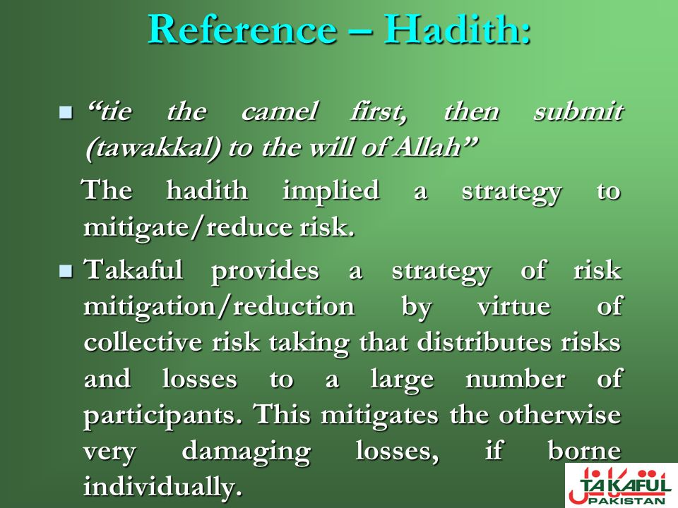 Reference – Hadith: tie the camel first, then submit (tawakkal) to the will of Allah The hadith implied a strategy to mitigate/reduce risk.