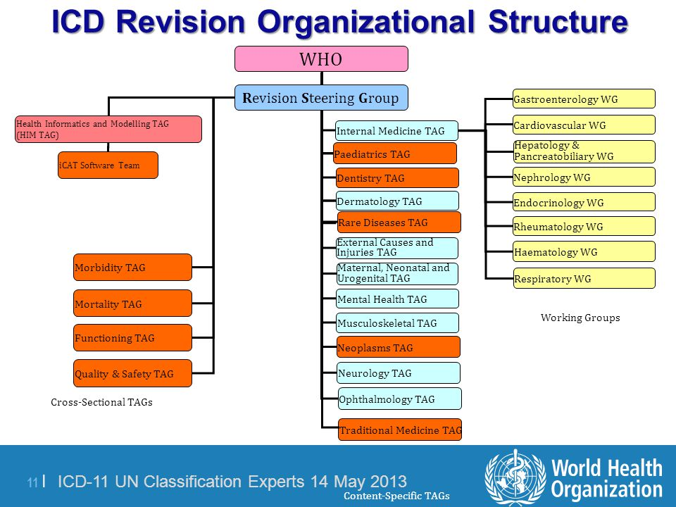 ICD Revision Organizational Structure