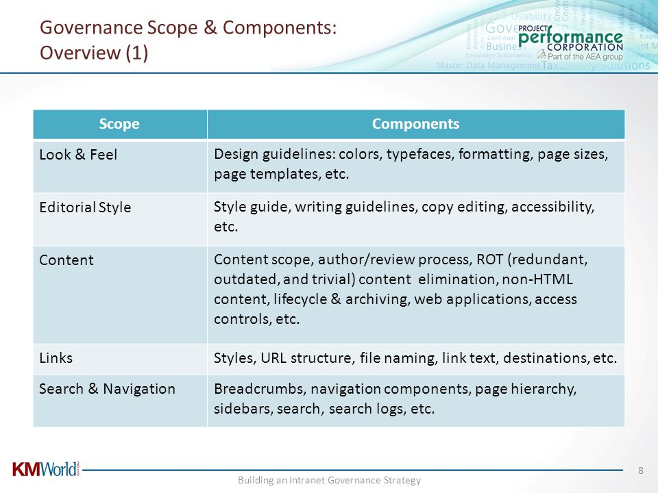 Governance Scope & Components: Overview (1)