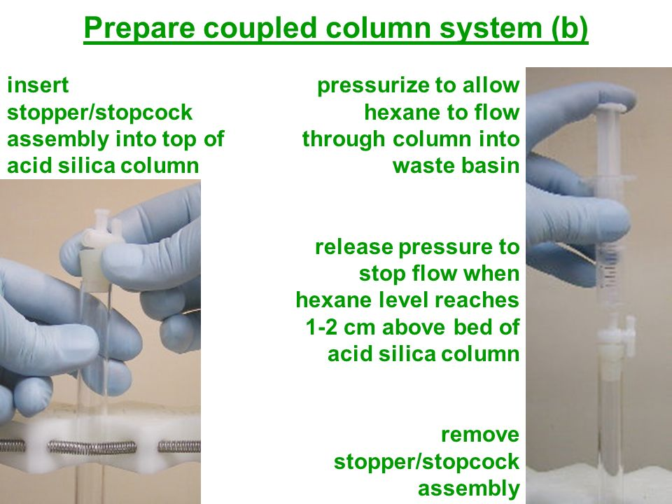Prepare coupled column system (b)