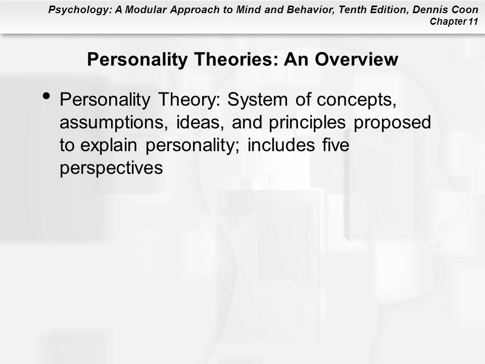 an overview of the five personality trait theories You've more than likely come across the term big five personality  personality dimensions or personality traits  overview of someone's personality.