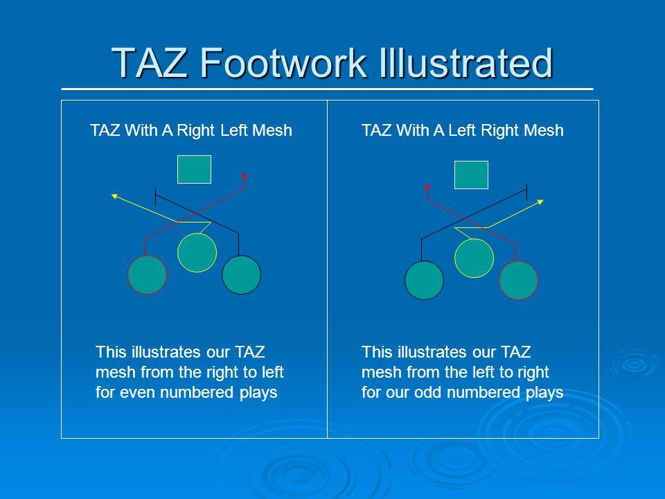 TAZ Footwork Illustrated