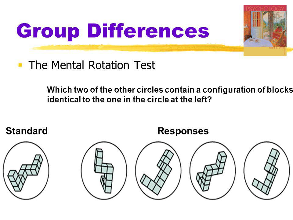 Group Differences The Mental Rotation Test Standard Responses
