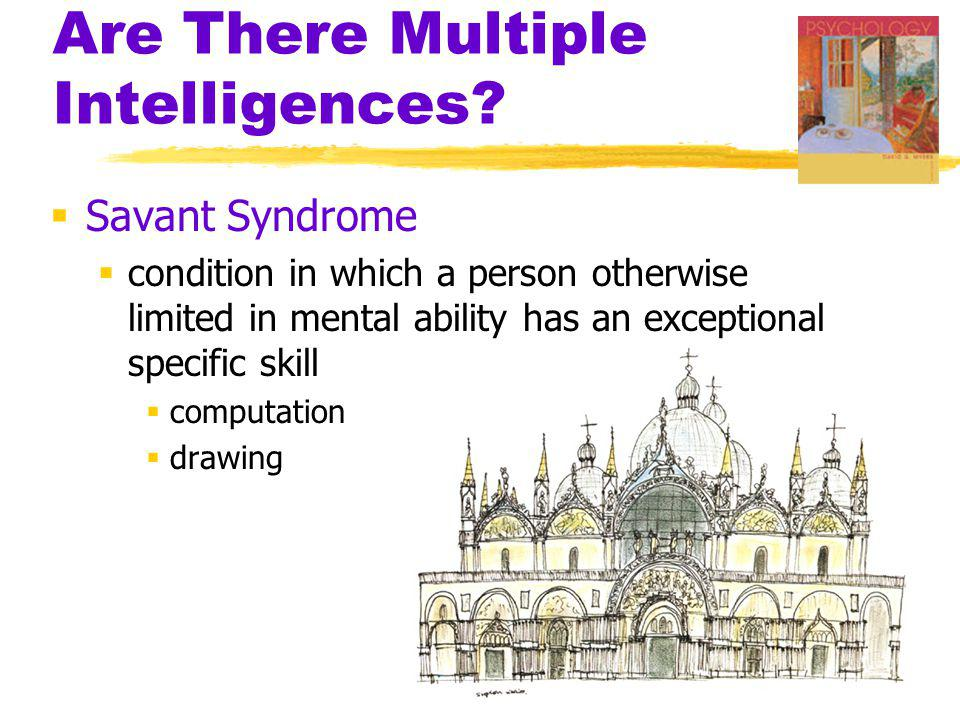 Are There Multiple Intelligences