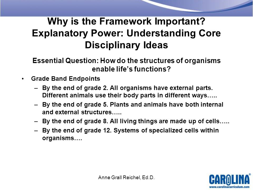 Why is the Framework Important