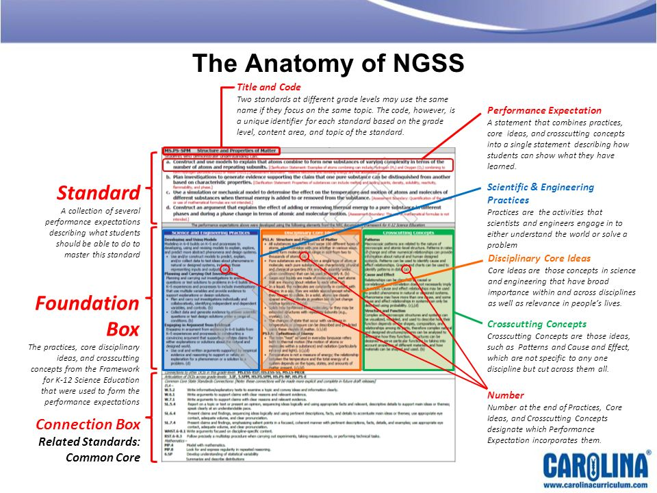 The Anatomy of NGSS