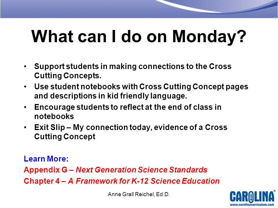 What can I do on Monday Support students in making connections to the Cross Cutting Concepts.