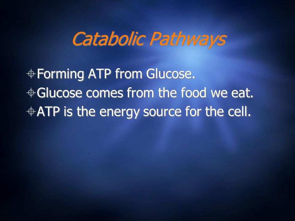 Catabolic Pathways Forming ATP from Glucose.