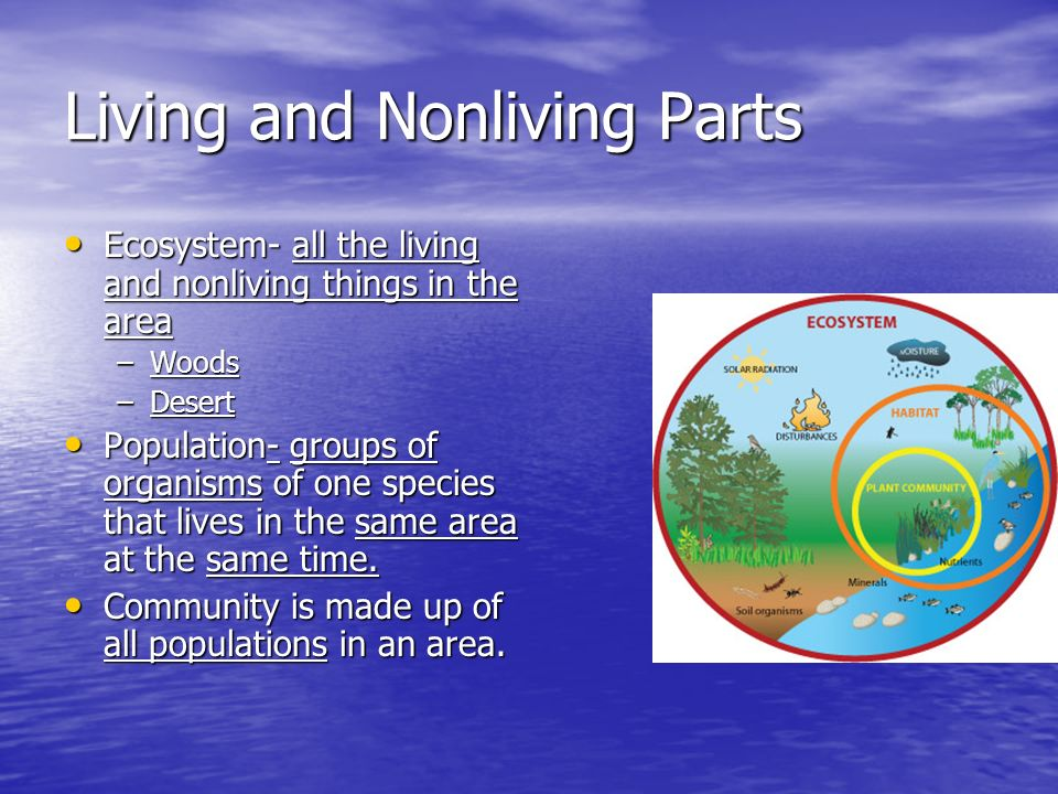 Living and Nonliving Parts