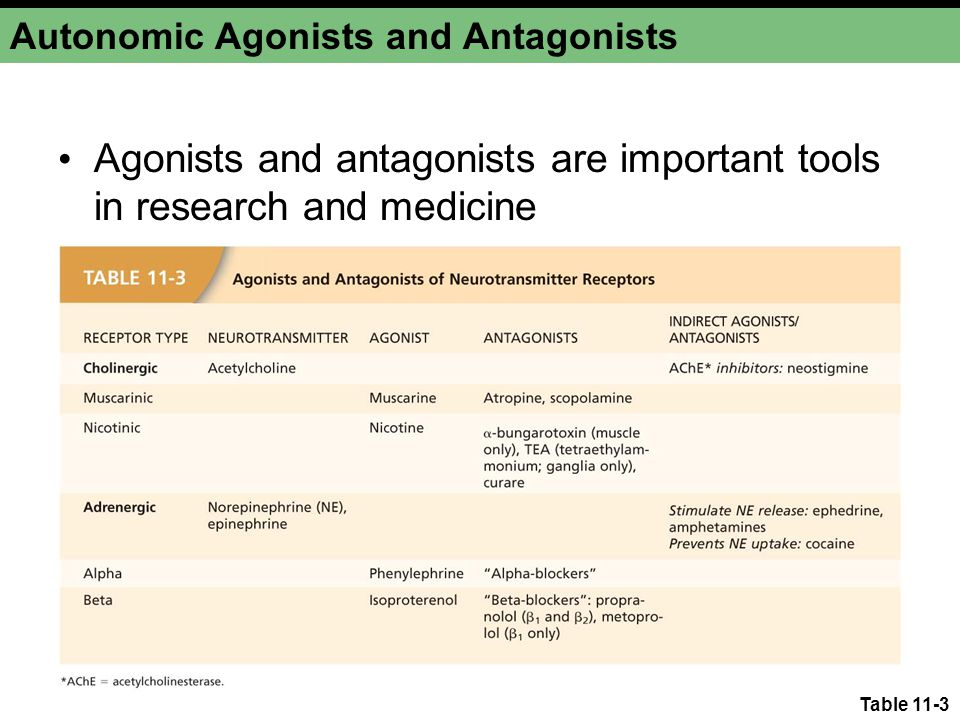 Autonomic Agonists and Antagonists