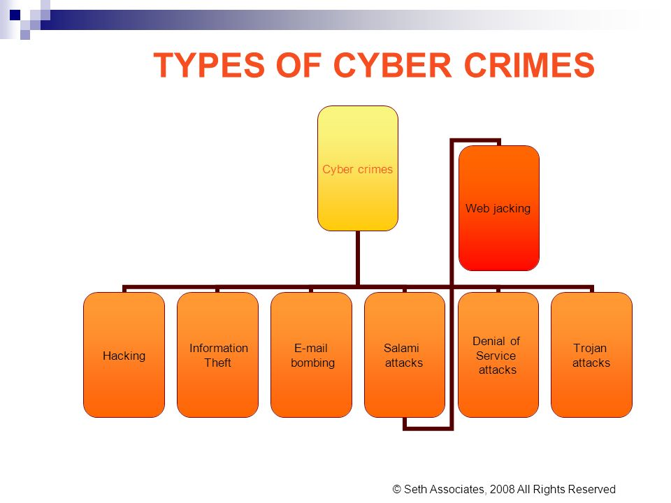 TYPES OF CYBER CRIMES © Seth Associates, 2008 All Rights Reserved