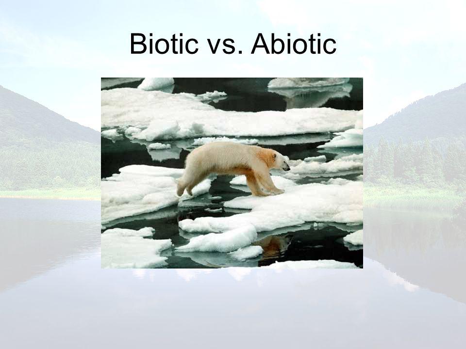 Biotic vs. Abiotic