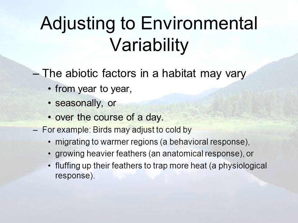 Adjusting to Environmental Variability