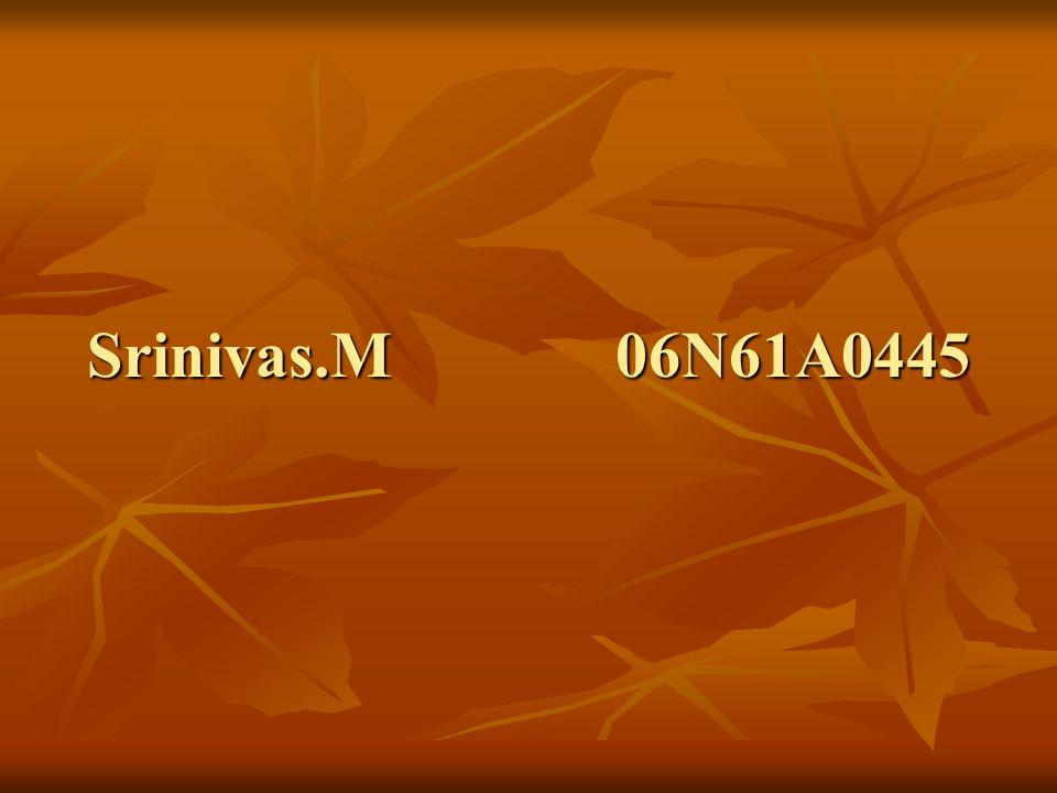 Srinivas.M 06N61A0445