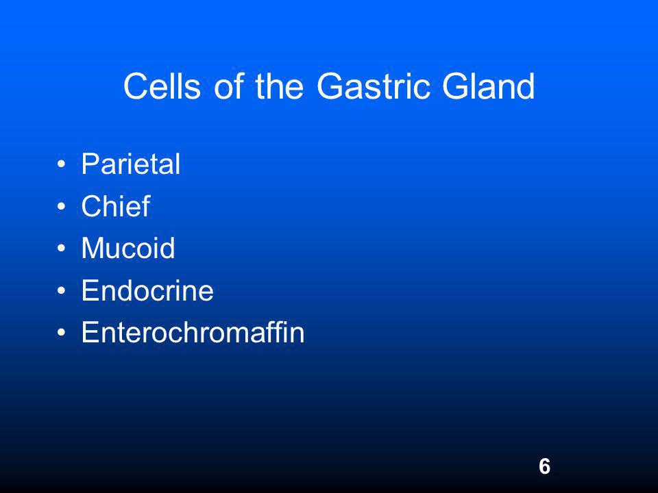 Cells of the Gastric Gland