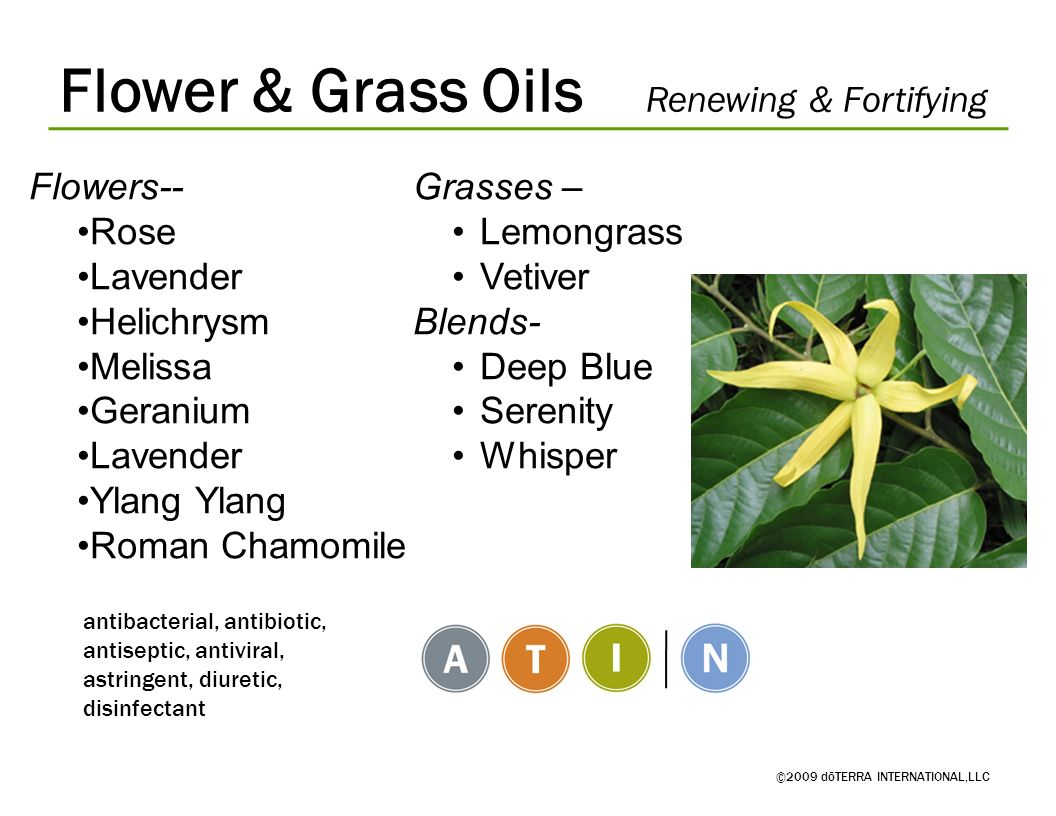 Flower & Grass Oils Renewing & Fortifying