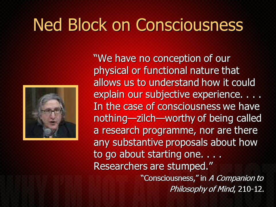 Ned Block on Consciousness