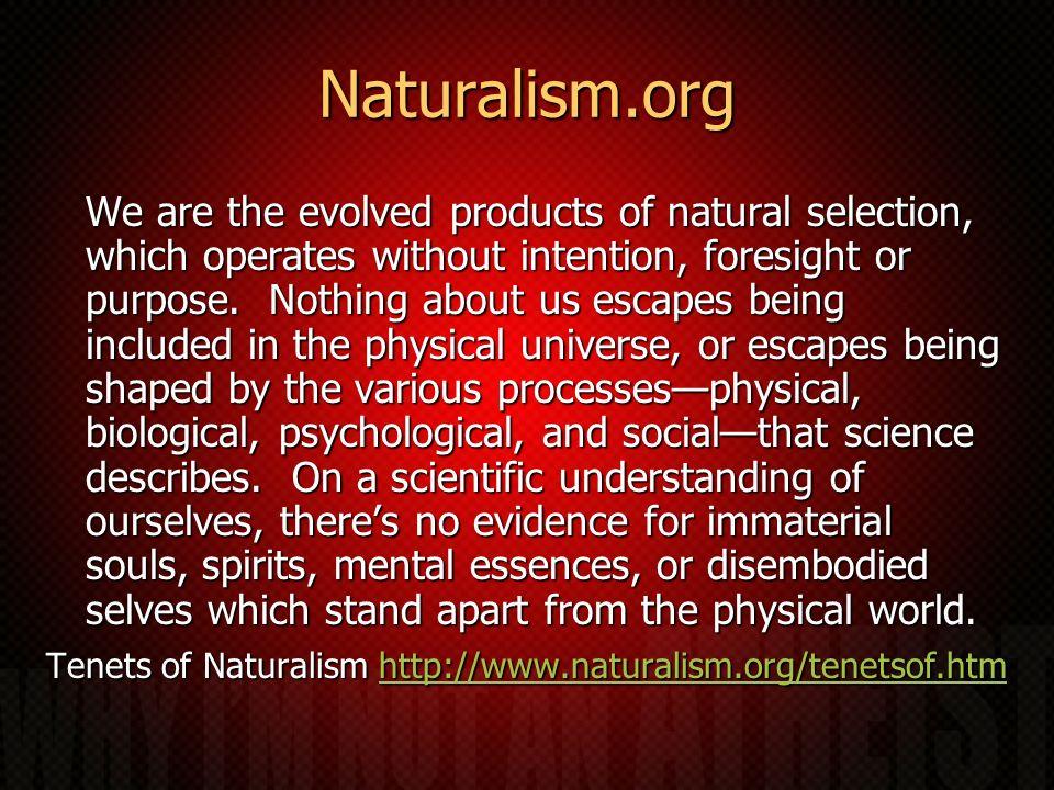 Naturalism.org