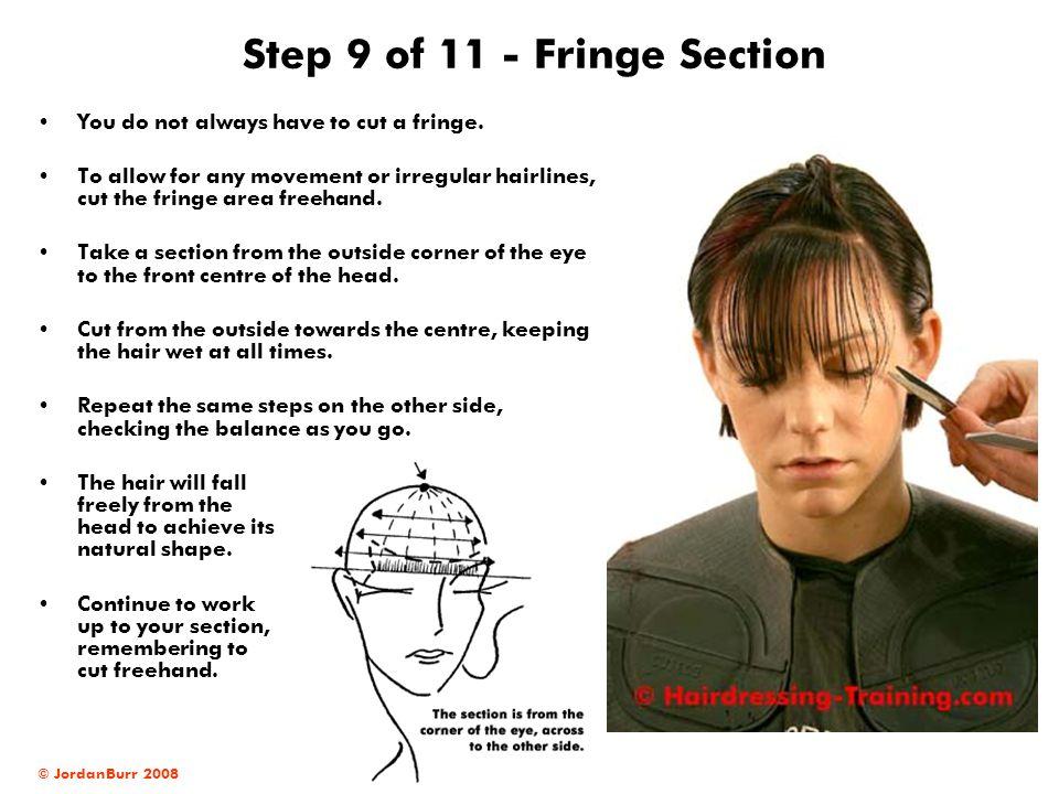 Step 9 of 11 - Fringe Section