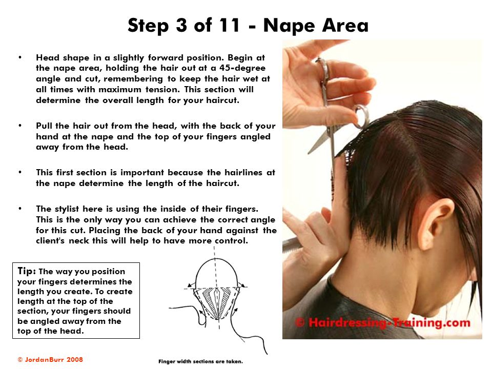 Step 3 of 11 - Nape Area