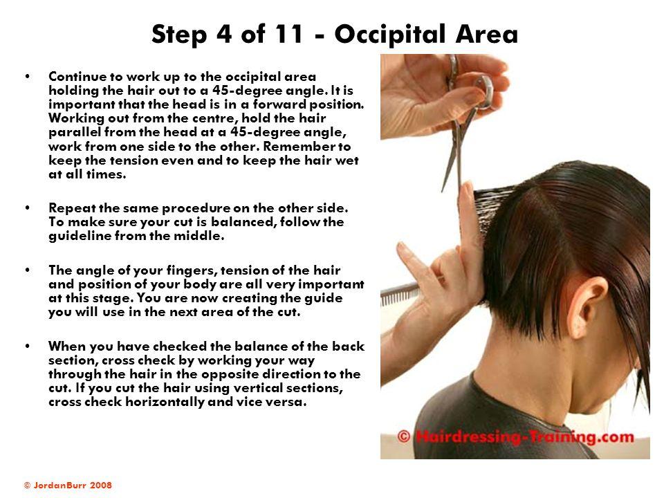Step 4 of 11 - Occipital Area