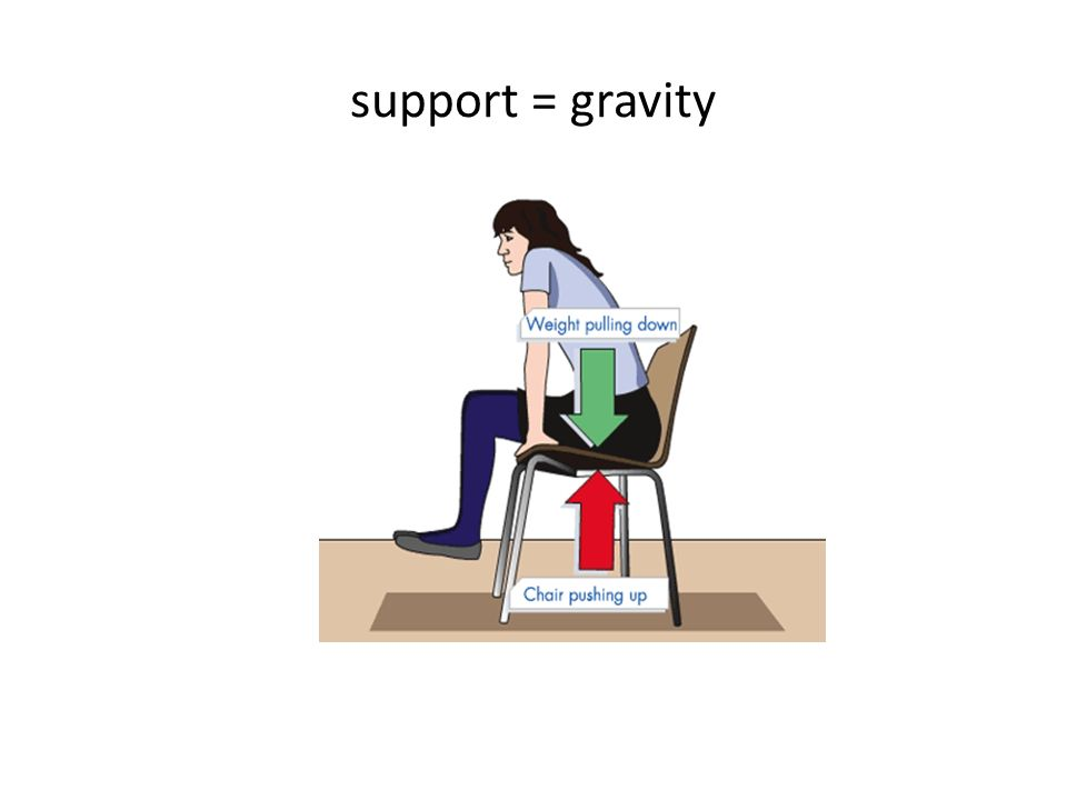 support = gravity