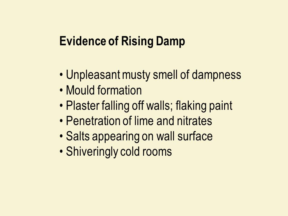 Evidence of Rising Damp