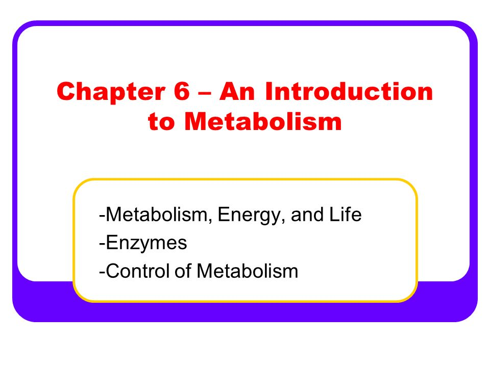 Chapter 6 – An Introduction to Metabolism