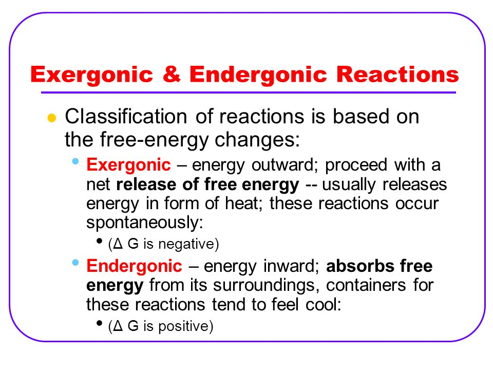 Exergonic & Endergonic Reactions