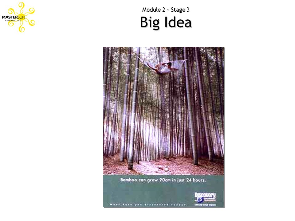 Module 2 - Stage 3 Big Idea