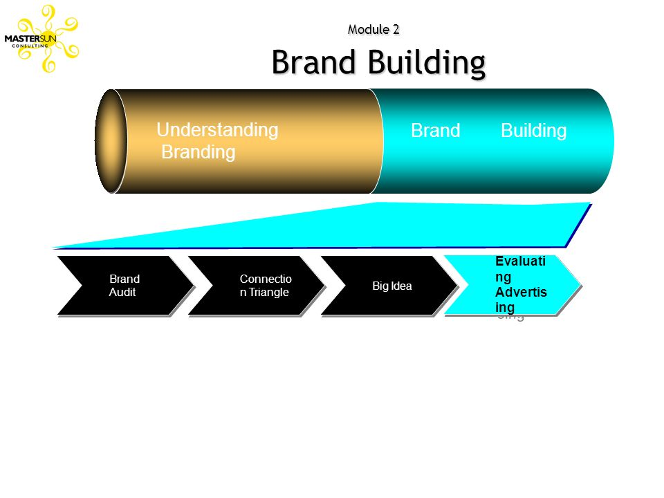 Understanding Brand Building Branding Evaluating Advertising