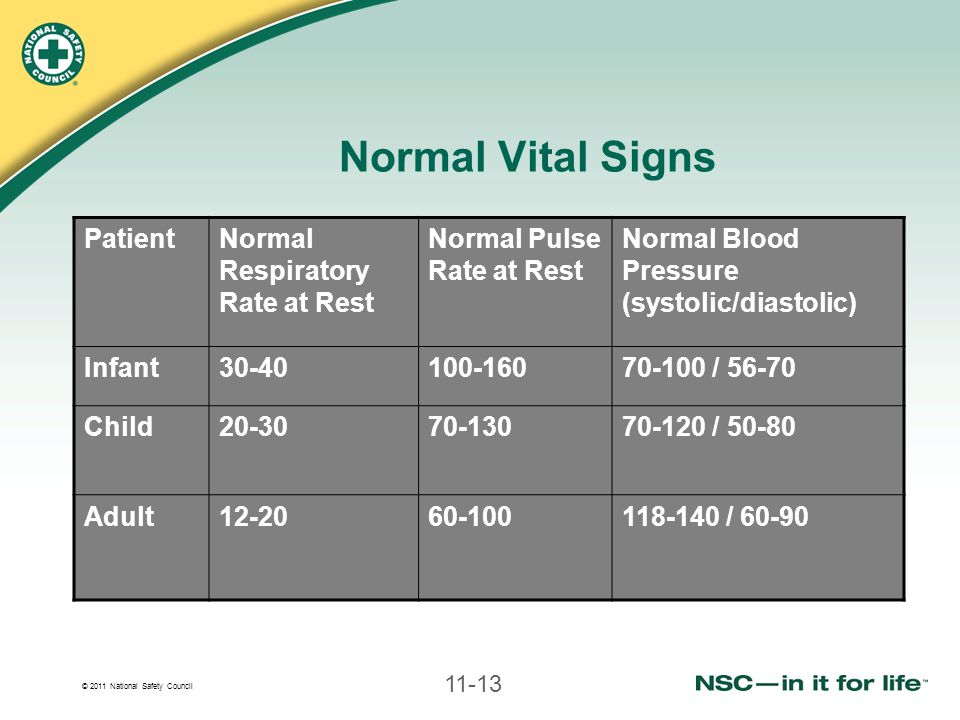 Normal Vital Signs Patient Normal Respiratory Rate at Rest