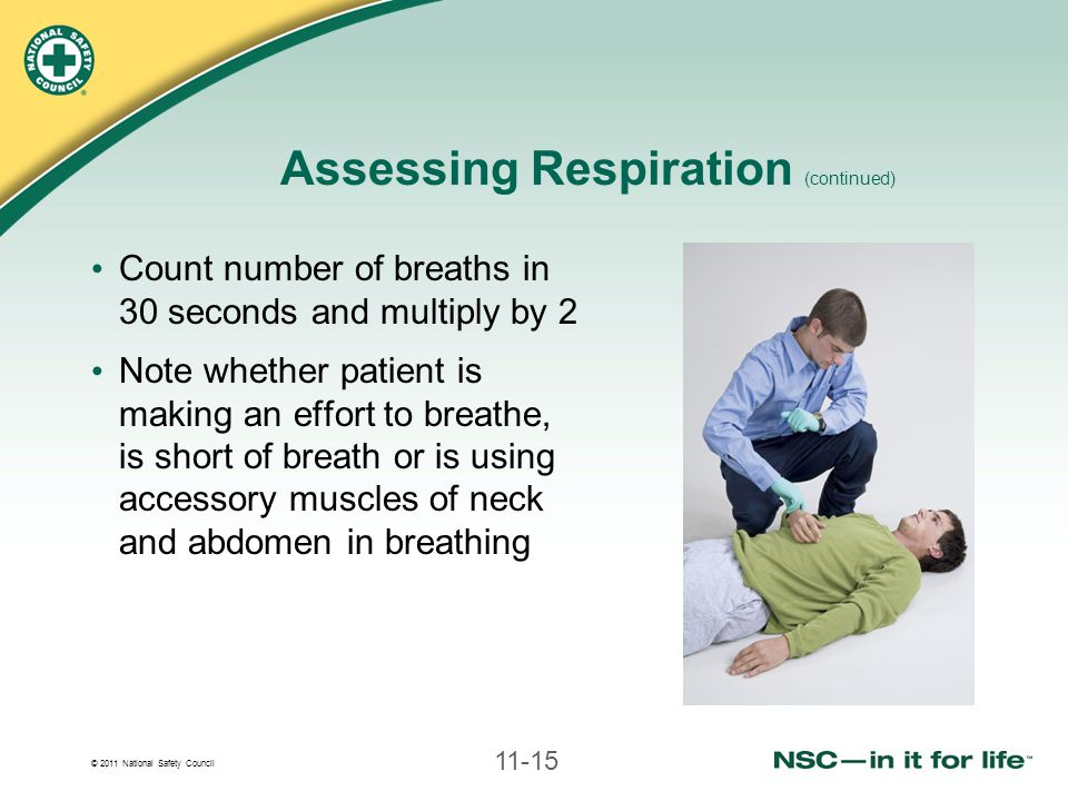 Assessing Respiration (continued)