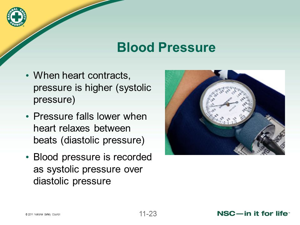 Blood Pressure When heart contracts, pressure is higher (systolic pressure)