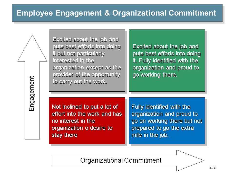 Employee Engagement & Organizational Commitment