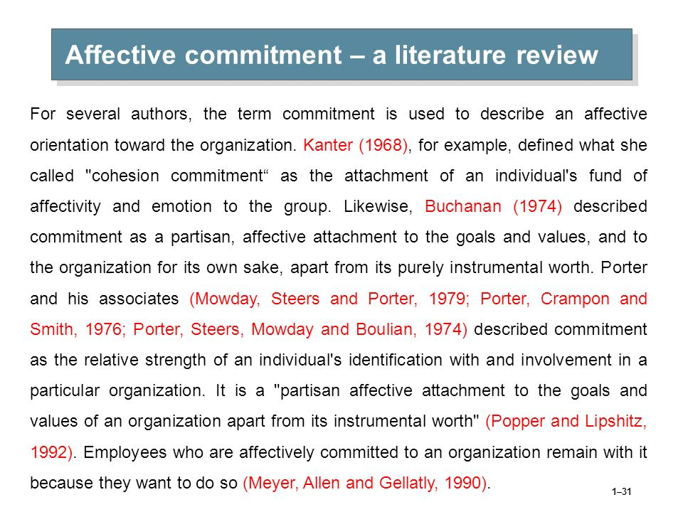 Affective commitment – a literature review