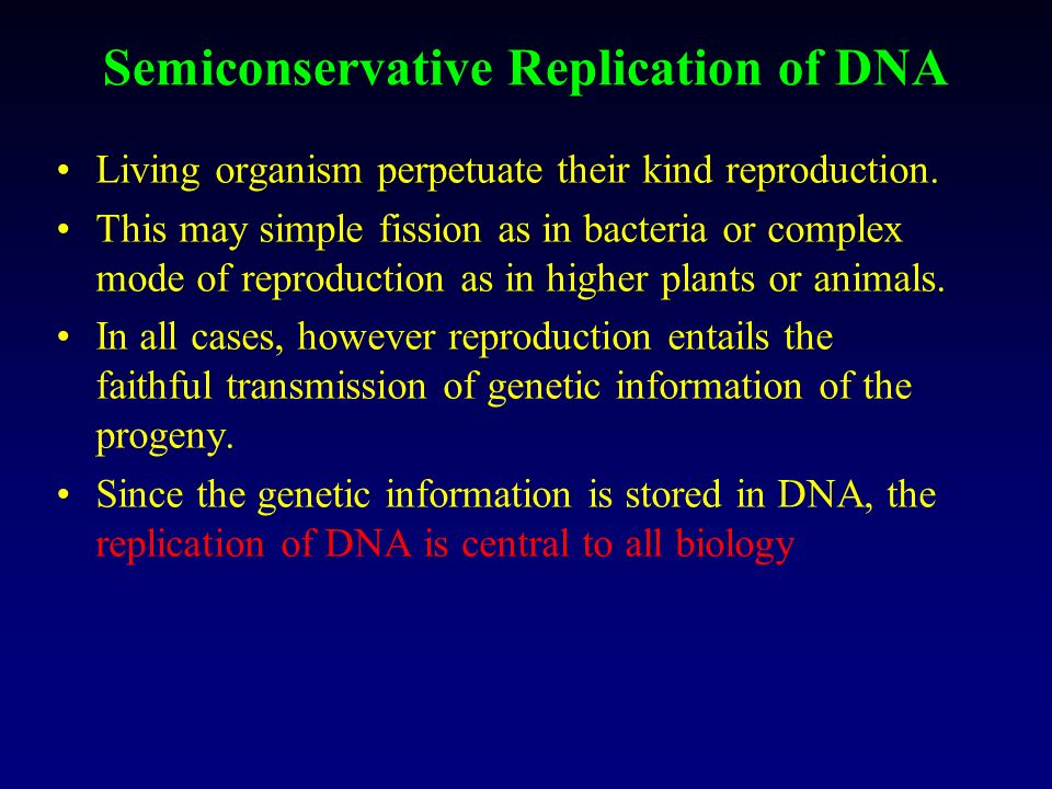 Semiconservative Replication of DNA