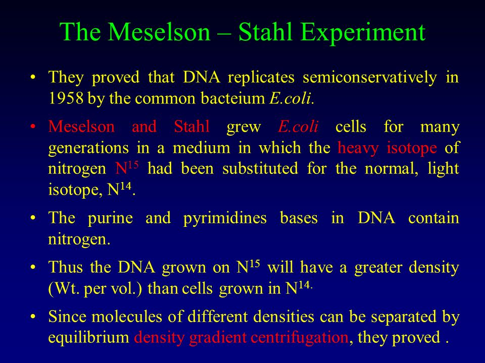The Meselson – Stahl Experiment