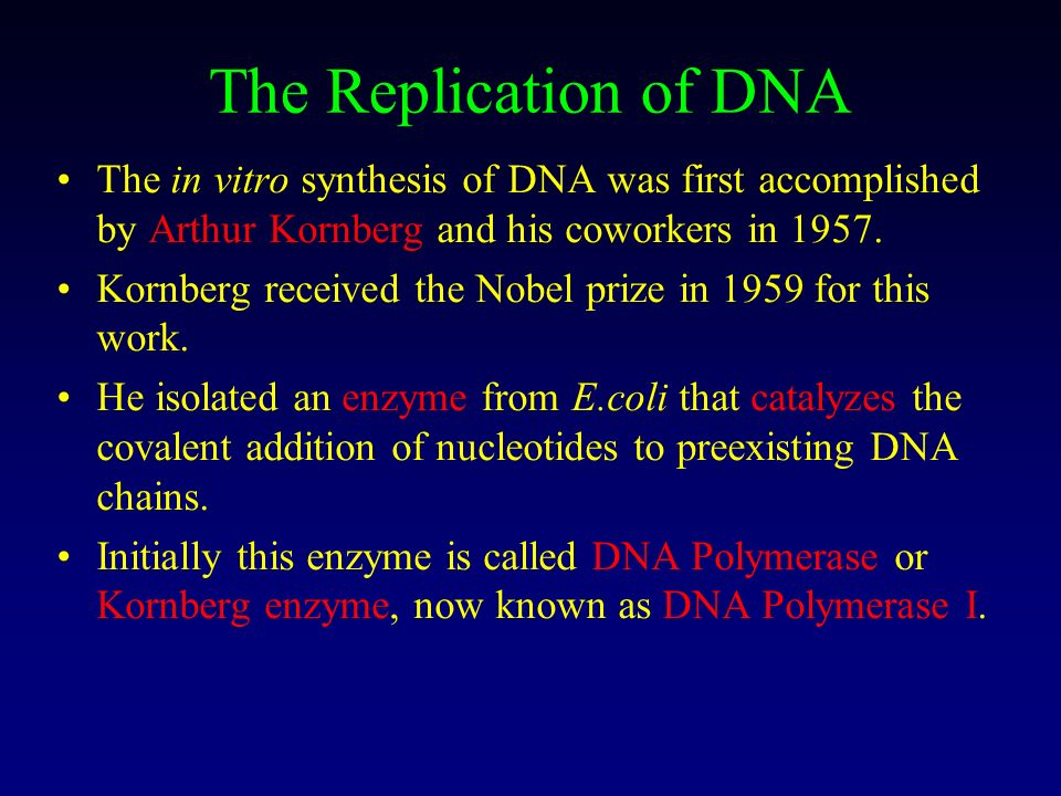 The Replication of DNA The in vitro synthesis of DNA was first accomplished by Arthur Kornberg and his coworkers in 1957.