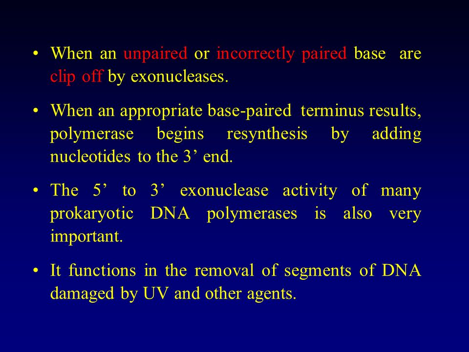 When an unpaired or incorrectly paired base are clip off by exonucleases.